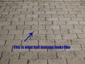 aurora-hail-damage-roof